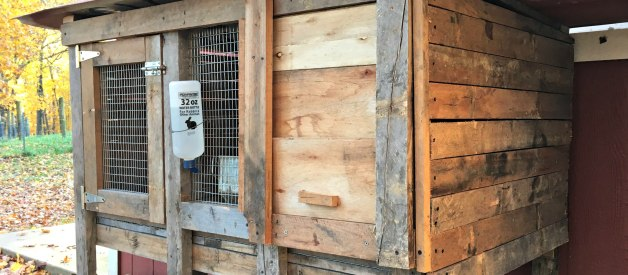 Building the Bunny Hutch (Premium)