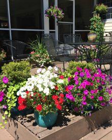 Garden Like a Master – 3 Secrets to Successful Container Gardens (Premium)