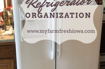easy refrigerator organization that works