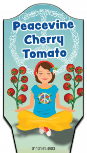 sv-peacevine_cherry_tomato-tag2