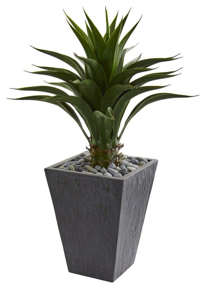 beach bathroom planter