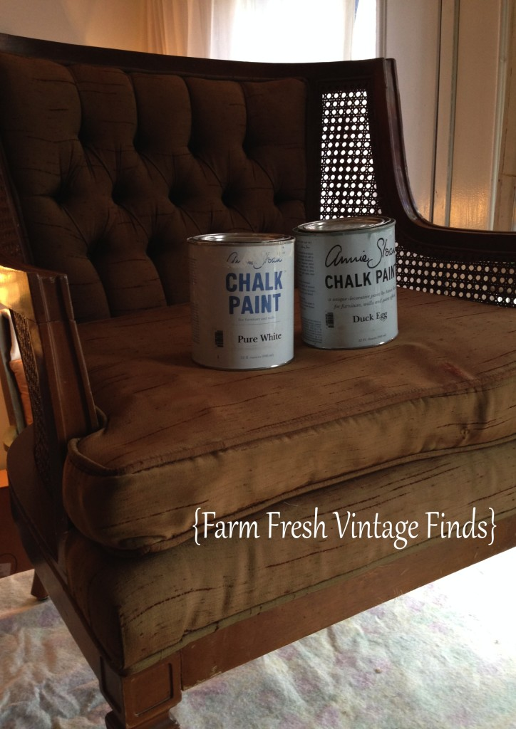 How to Paint Fabric with Annie Sloan Paint  Farm Fresh
