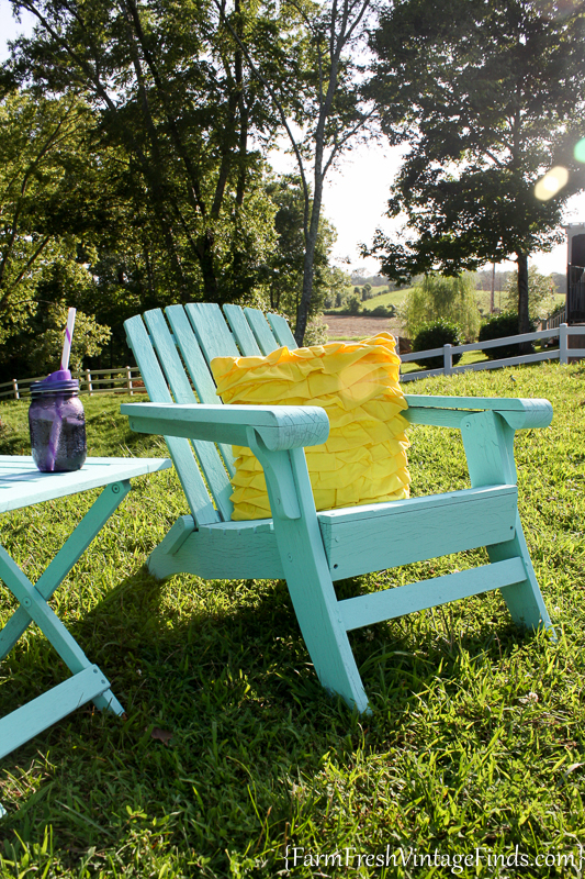 paint for adirondack chairs best office chair support cushion painted homeright finish max diy farm 9