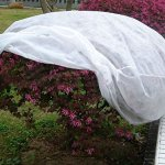 Agfabric-Warm-Worth-40Hx60Dia-55oz-Plant-Protecting-bag-for-frost-protection-0-0