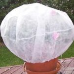 Agfabric-Warm-Worth-40Hx60Dia-55oz-Plant-Protecting-bag-for-frost-protection-0-1