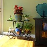 Elegant-European-Style-Cart-Design-6-Tier-Black-Metal-Planter-Flower-Pot-Holder-Display-Rack-Stand-0