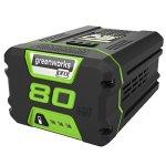 GreenWorks-Lithium-Ion-Battery-0