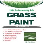Lawnlift-Ultra-Concentrated-White-Grass-Paint-1-Gallon-11-Gallons-of-Product-0-0