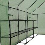 Ogrow-2-Tier-12-Shelf-Portable-Garden-Walk-in-Greenhouse-117-x-67-x-83-Dark-Green-0-1