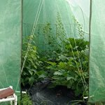 Quictent-Reinforced-PE-Cover-15-X-7-X-7-Portable-Greenhouse-Large-Walk-in-Green-Garden-Hot-House-Gift-0-0