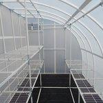 Solexx-Harvester-Greenhouse-5MM-Deluxe-8x12x8-0-0