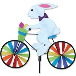 20-In-Bike-Spinner-Bunny-0