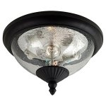Sea-Gull-Lighting-Two-Light-Outdoor-Close-to-Ceiling-Fixture-0