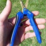 Small-Shear-Curved-Titanium-Micro-Tip-Blade-0-1