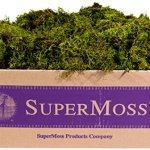 SuperMoss-Sheet-Moss-Mini-Shredded-Preserved-0