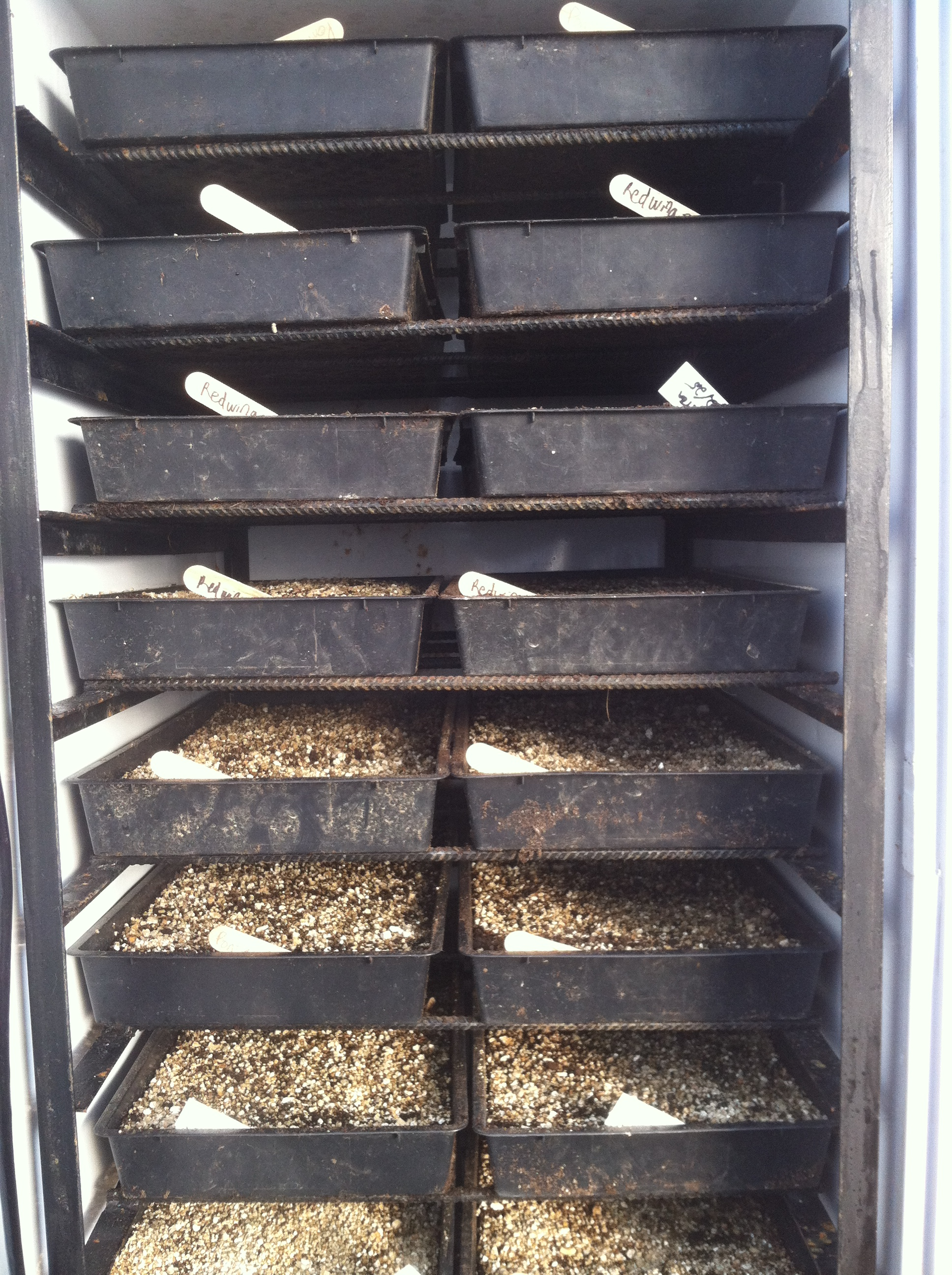 Sweat Box Germination Chamber  Farm Hack