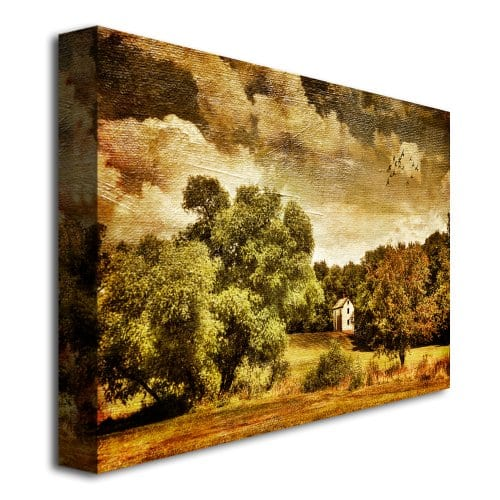 Trademark Fine Art Old Farm House by Lois Bryan Canvas Wall Art ...