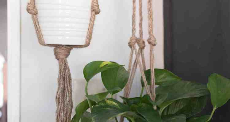 Simple DIY Plant Hanger Macrame for Beginners