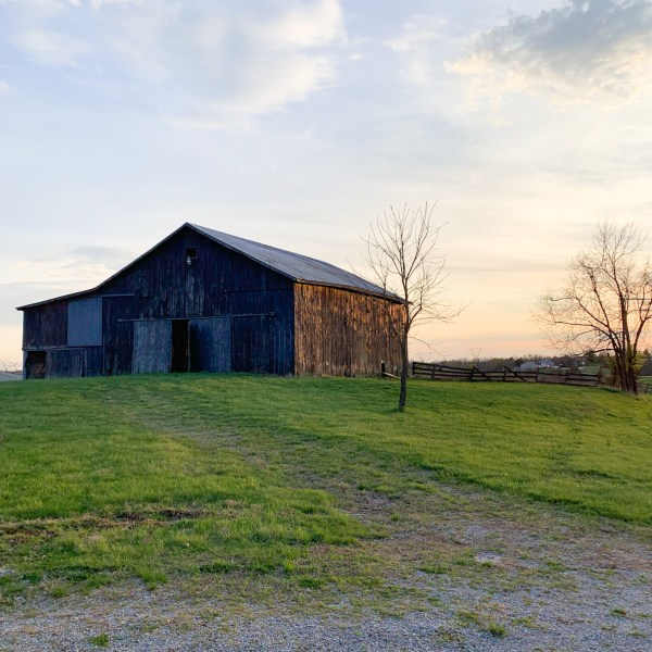 Moving to the Country: Buying a House with Land