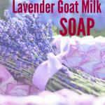Five Minute Lavender Goat's Milk Soap