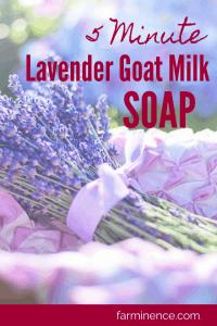 lavender goat milk soap, homemade soap, homemade soap recipes, homemade goats milk soap, goat milk soap recipe, lavender soap recipe, lavender soap diy, making goats milk soap, making goat soap, making goat milk soap easy diy