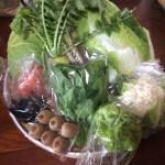 野菜パックを発送しました