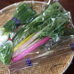 恋するイケメン農園トミーファームのプレゼント、野菜パック発送しました