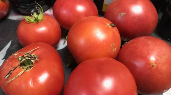 トマト、いっぱいあったらどうする?