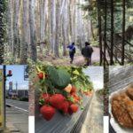 【3月29日】春爛漫🌸旬菜里で遊ぼう〜小手苺園でいちご狩りしてハイキングしよう♪〜