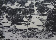 Tiv Farming compound 1970s