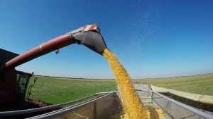 Grain Auger Accidents - Farm Injury Resource Center