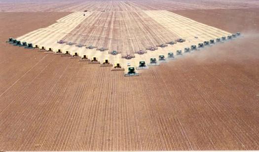 https://i0.wp.com/farmlandgrab.org/wp-content/uploads/2010/06/colheita_milho.jpg