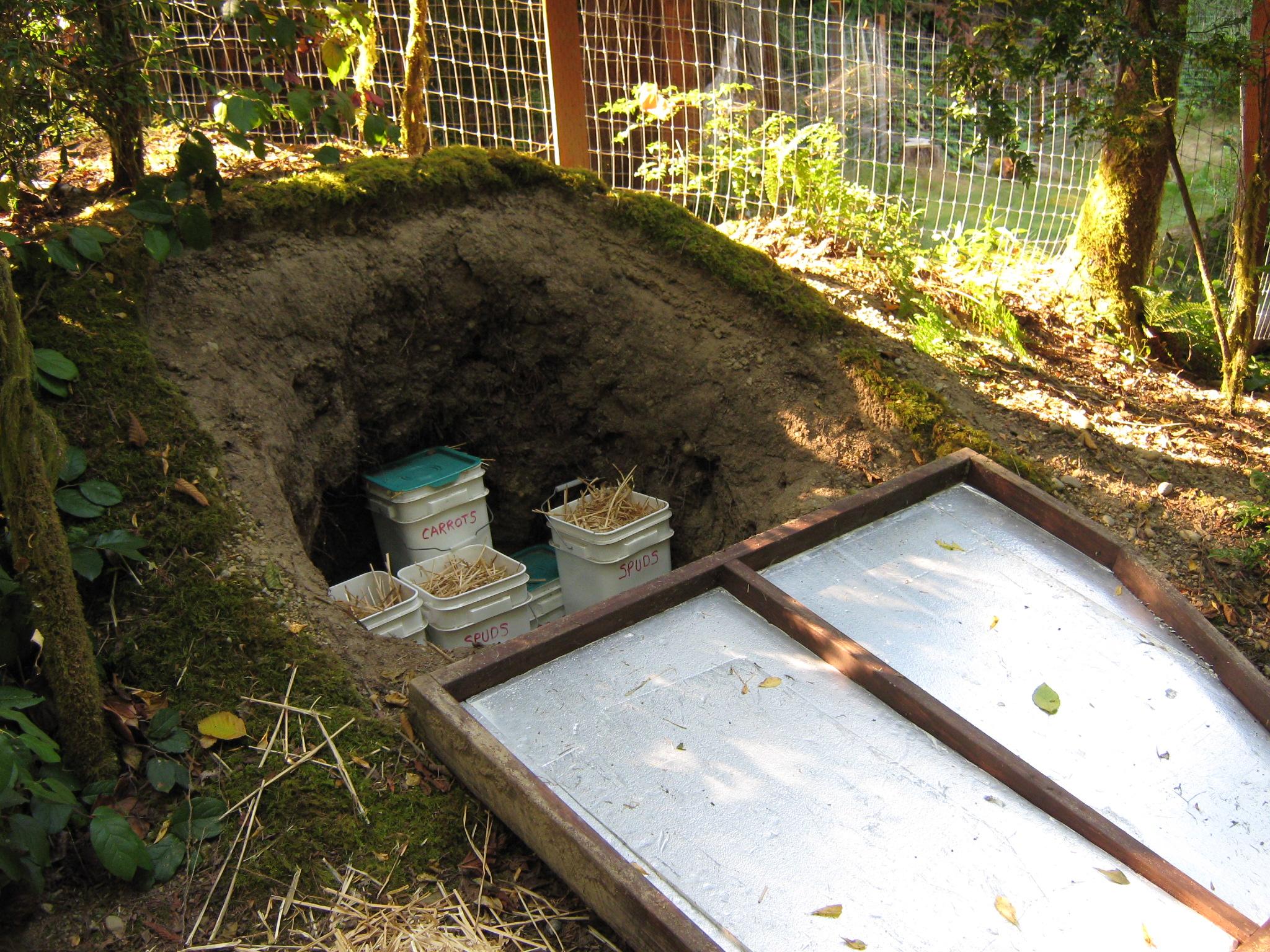 root cellar  Farmlet