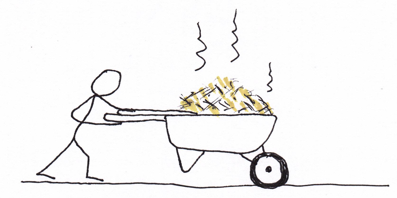 Moving Chicks Cartoon