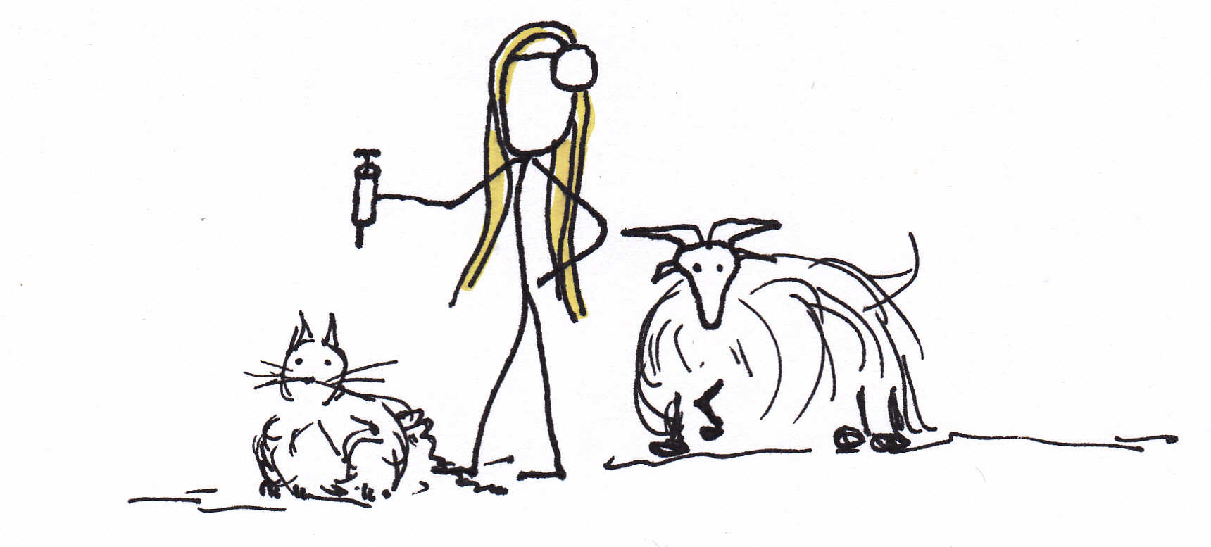 Cat Scan Cartoon