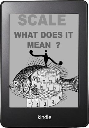Scale What Does It Mean - E-Book Cover