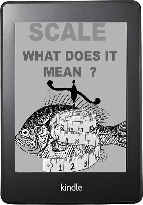 Scale What Does It Mean?