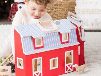 Toyfarm set with barn