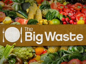 the-big-waste-400