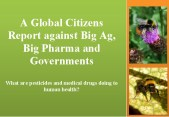 global citizen report