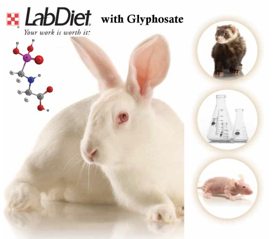 LabDiet with Glyphosate