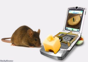 Cell-Phone-Mouse-Trap