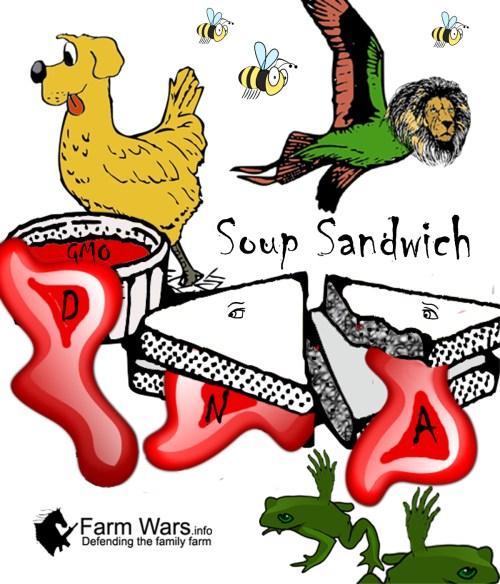 soup sandwich copy