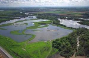 bay delta estuary