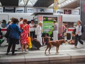 Travelers at Munich main station.