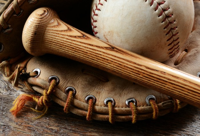 Baseball, baseball bat handle and baseball glove