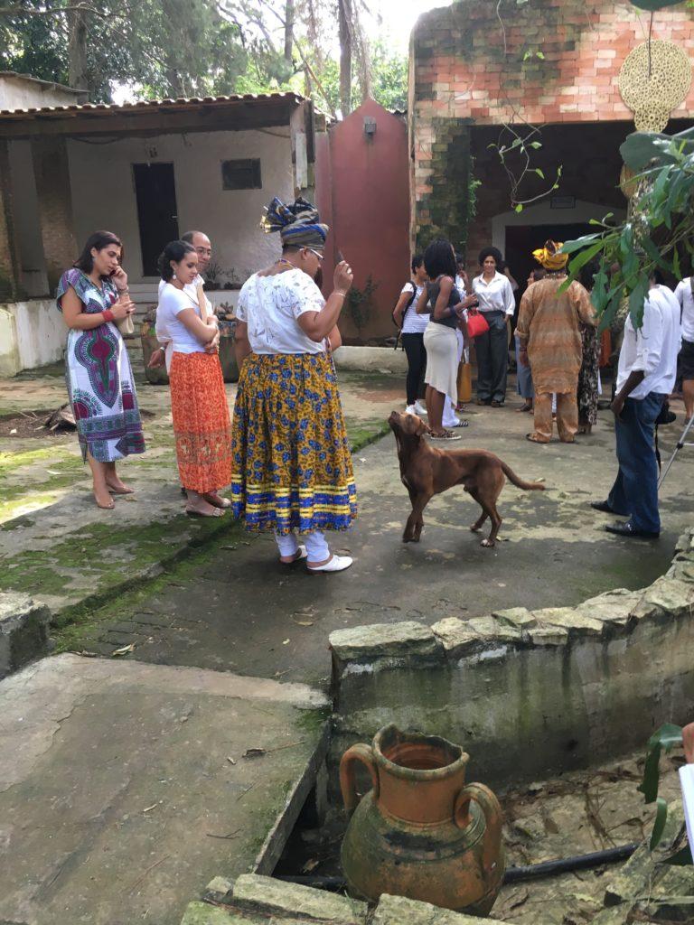 O cachorro Favela acompanha o passeio pelo terreiro