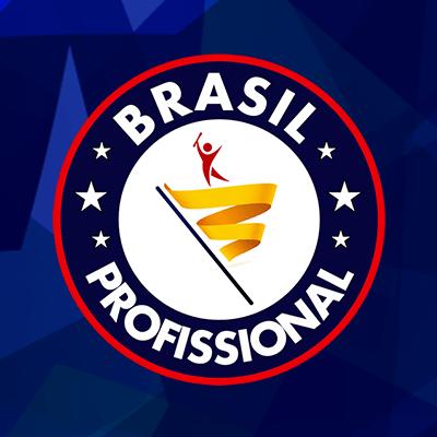 Resultado de imagem para brasil profissional