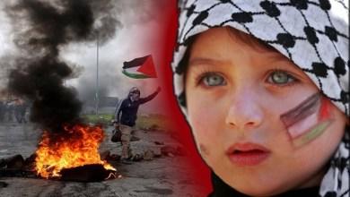 Palestine Cries