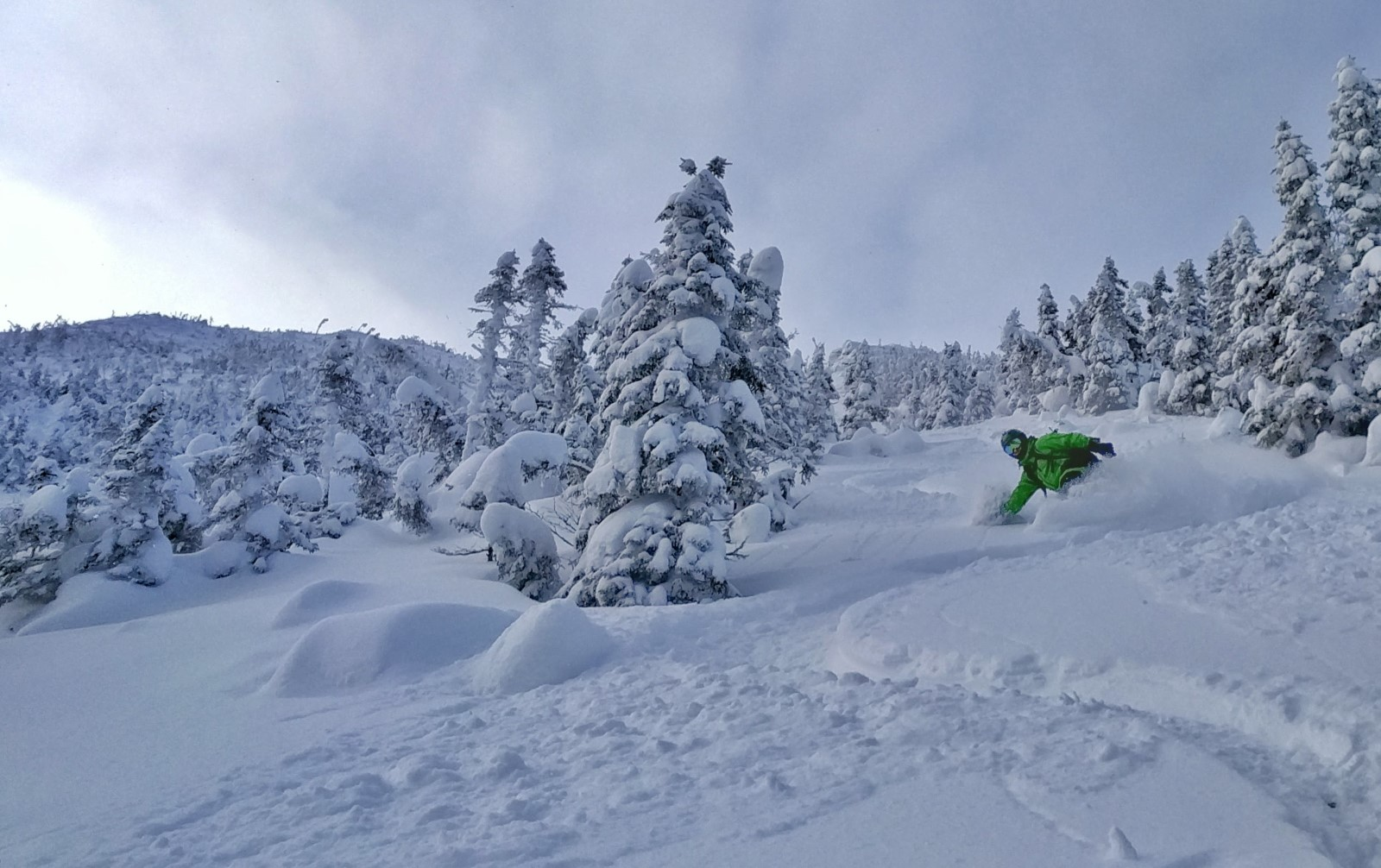 Lyall Deep Snowpack